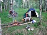 Лагерь в берёзовой роще